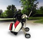 Wózek golfowy z greenem