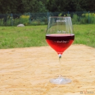 Giant Wine Glass diVinto - Who cares - Diamond