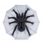 Taranturella - Odwrócony Parasol Pająk