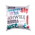 Baby Audio Pillow (PL)